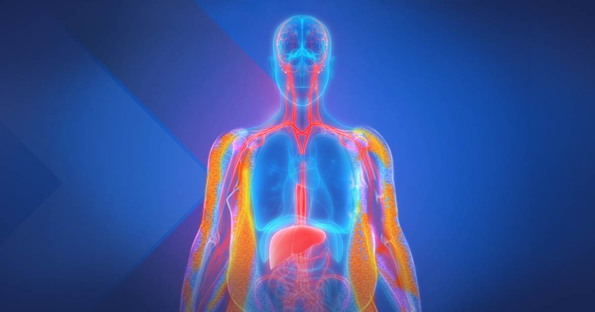 A Surgeon's Unexpected Take on Obesity - Kaleidoscope Innovation Event